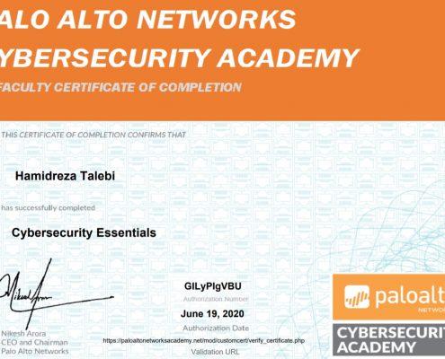 Hamidreza Talebi Palo Alto Cybersecurity Essentials